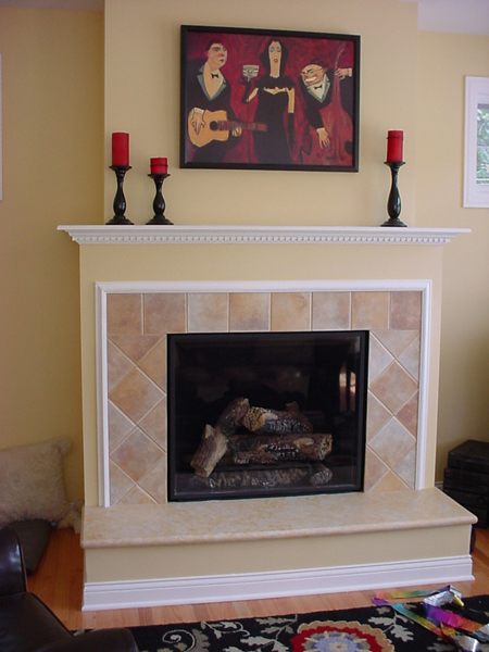 Fireplace Store Chicago Fireplaces